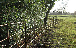 Post restoration iron railings