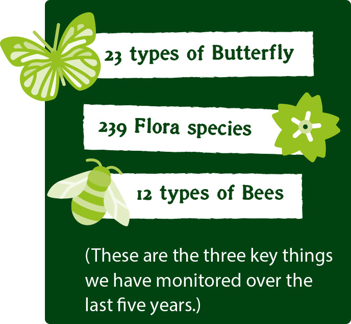 The three things we have monitored over the last five years are 23 types of butterfly, 239 flora species and 12 types of bees.