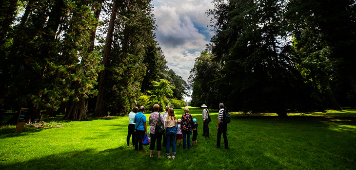 Facing the future at Westonbirt Arboretum